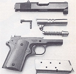 Field Stripped Detonics Pistol