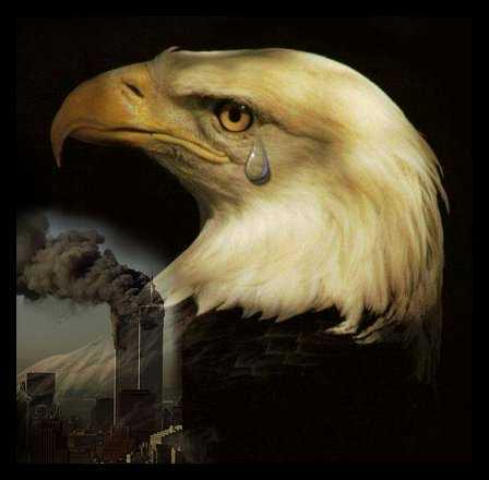 WTC Eagle Tear