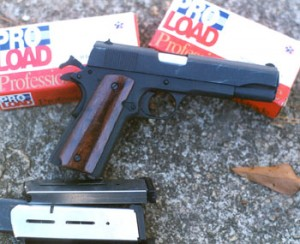 With Pro Load ammunition and Wilson Combat magazines, this one is a good performer