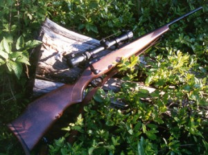 Savage Model 110 in .243 Winchester